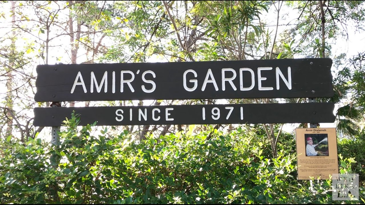 lets hike to amirs garden in griffith park - Amirs Garden