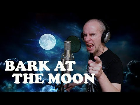 Ozzy Osbourne - Bark at the moon (vocal cover)
