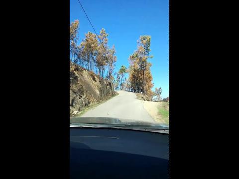 Benfeita   Pai das Donas, DEPOIS dos incêndios de 15Out2017,  subida da estrada parte 1 Video 201801