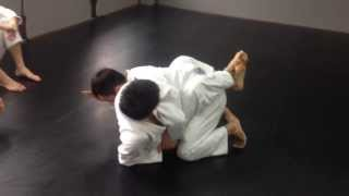 Counter kimura to back mount