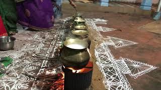 Pongal Celebration in Chettinad, Jan 2018