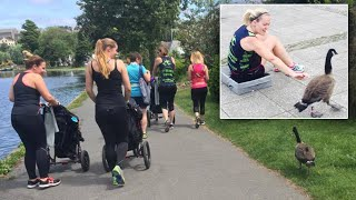 Watch Goose Join Fitness Class For A Run
