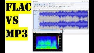 Flac vs Mp3 | See the difference