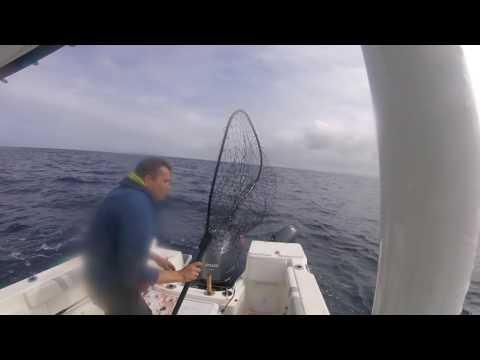 Tuna Fishing Newport Oregon