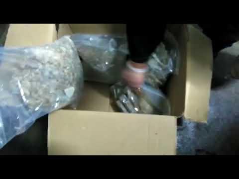 Narkotyki warte 2,7 mln zł przemycone były między oponami