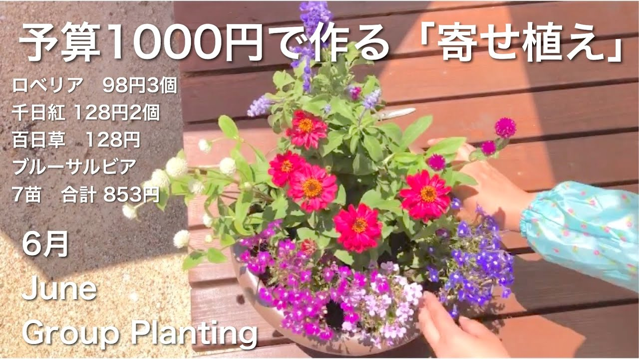(6月)予算1000円で簡単!「寄せ植え」を作る♪癒し時間♪ DIY Group planting