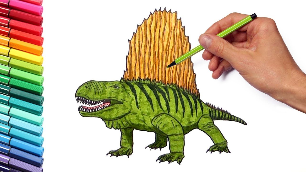 Drawing and Coloring Dimetrodon - Dinosaurs Color Pages for ...