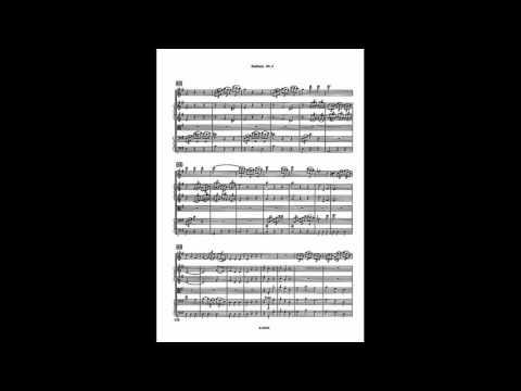 Haydn - Symphony No. 6