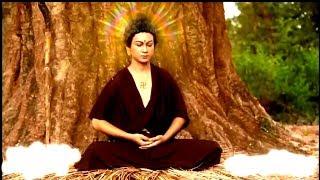 Phim đặc sắc về Đức Phật - Con đường giác ngộ 01