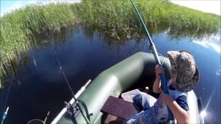 Пять минут рыбалки на р. БУРЛА,
