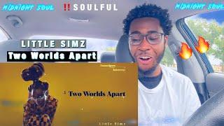 LITTLE SIMZ X TWO WORLDS APART {SOUL REACTION}