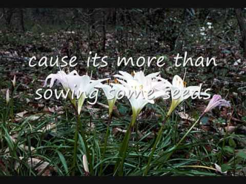 How do you fall in love with lyrics - Alabama