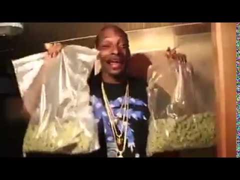 Snoop Dogg is happy - Weed Dance