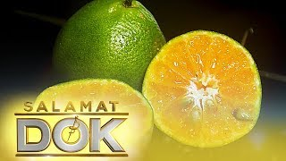 Salamat Dok: The health benefits of dalandan, calamansi, and pomelo
