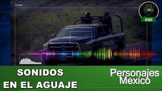 radiofrecuencia-de-policas-en-el-aguaje-aguililla