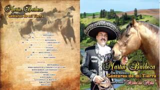 Gambar cover Martin Barboza La Borrachita