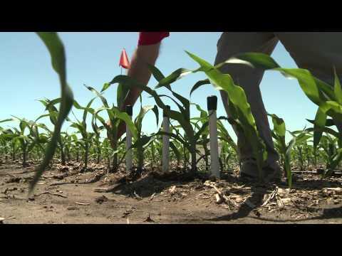 Installing Soil Moisture Sensors in the Field