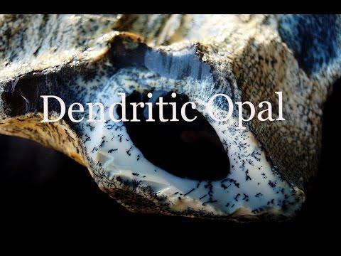 dendritic-agate-rough-280-gr-natural