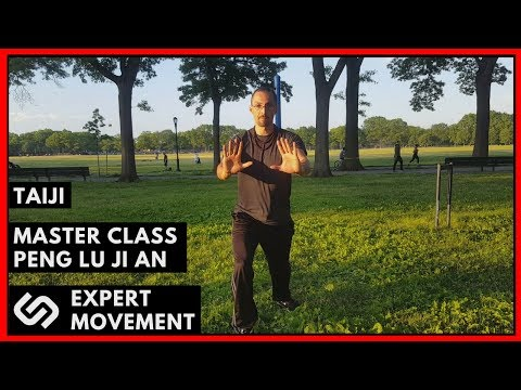 Taiji Chuan Form Mastery For Combat Pt. 1 ☯ Peng Lu Ji An