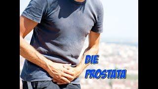 prostatilen ed erezione