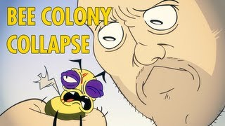 Bee Colony Collapse : animated music video : MrWeebl