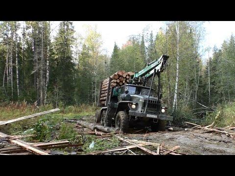 Опять за лесом на Урале... р.Вишера р.Чёрная Горевший лес...