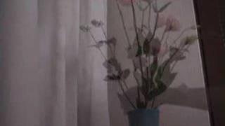 Art of Japanese flower arrangement - IKEBANA #3.