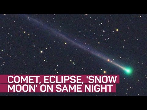 A comet, a snow moon and a penumbral lunar eclipse walk into a bar...