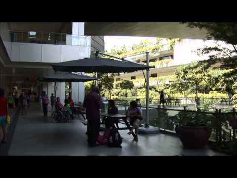 SBEnrc Project 1.5 - Singapore: Biophilic City (Movie)