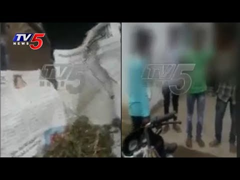 High School Students Turn Ganja Addicts in Jagtial | TV5 News
