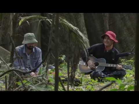 101 Earthworks: Animal Collective: The Amazon Chapter 2