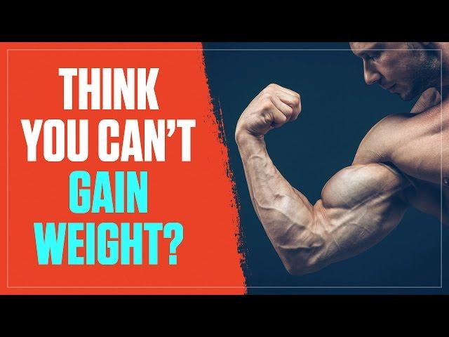 tsatsouline beyond bodybuilding pdf downloadgolkes