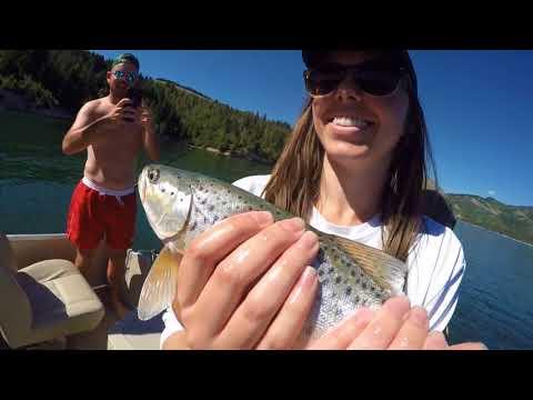 Palisades Reservoir Fishing