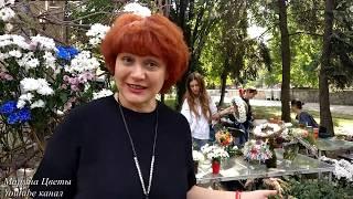 Потрясающая флористика . День города Днепр . Интерьвью с Еленой Дикаловой .
