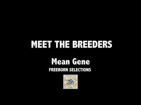 Freeborn Selections/Aficionado with Mean Gene