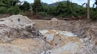 Operação Onda Verde combate o desmatamento ilegal na Amazônia