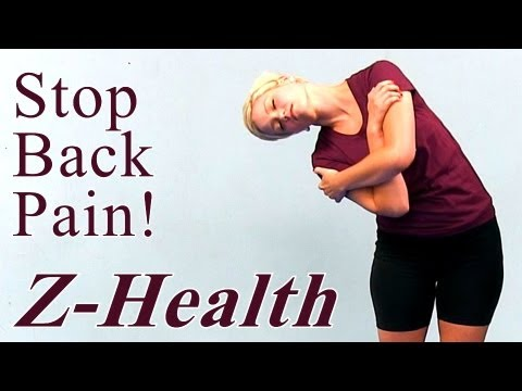 Stop Back Pain: Z Health Exercises for the Spine ...