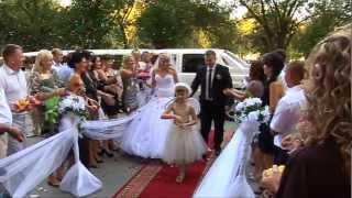 Ведущая Свадьбы Елена Дронова