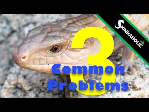 Problems First Time BTS Keepers Experience - Ep. 72