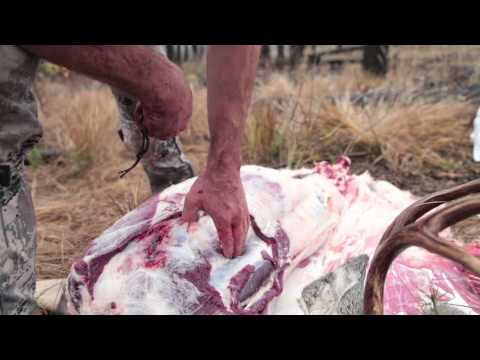 EatWild - Skinning and Boning Out a Deer - How to Backpack an Animal Out from the Field