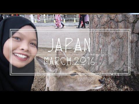 Osaka Japan | Travel