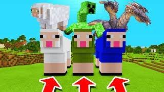 Minecraft PE : DO NOT CHOOSE THE WRONG SHEEP! (Jeb Sheep, Mutant Creeper & Hydra Dragon)