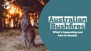 Bushfires in Australia: Please Donate
