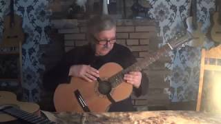 00001 Сравнение семиструнных гитар Martinez и Jovial