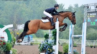 Equestrian Motivational (Don't give up !)-HD