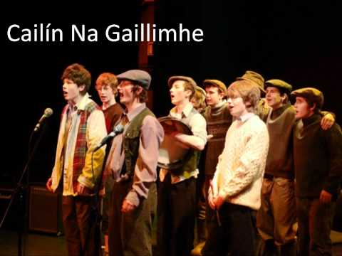 Na Gealt - Cailín Na Gaillimhe, Galway Girl (As Gaeilge)