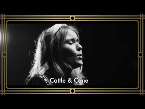 Cattle & Cane x Globe Stockton
