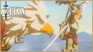 Zelda: Breath Of The Wild - Vah Medoh (48)