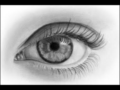 pencil drawing courses online 4 things you need to know