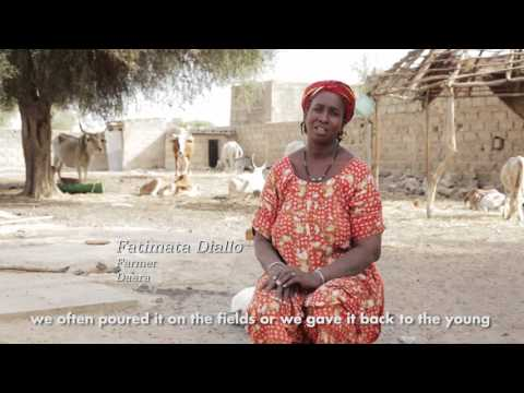 Supporting female education and women's empowerment in Senegal